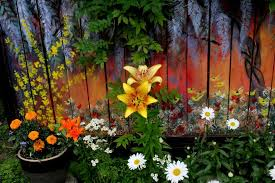 I Revived Our Old Garden Fence By Painting Vivid Flowers On It Garden Mural Fence Decor Backyard Fences