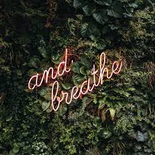 The Power of Breath - Carlene Murray Health & Wellness Coach