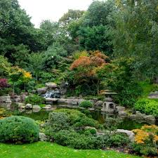 plant a japanese garden in a small space