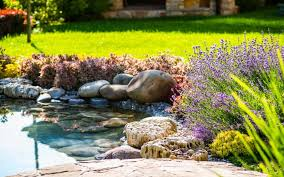 landscaping ideas to increase curb