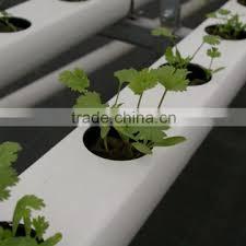 europe indoor hydroponic growing kit