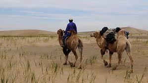Royalty-free Gobi Desert photos free download | Pxfuel