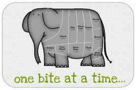 Learning Log 128 – Final Coaching Session (aka eating that elephant) – The  Public Health Informationist