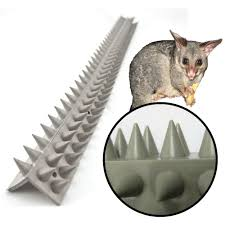 Anti Bird Spikes Fence Wall Spikes L Section Buy Online