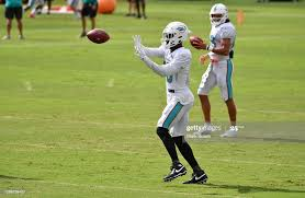Preston Williams of the Miami Dolphins cathces a pass during training...  News Photo - Getty Images