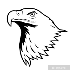 Bald Eagle American Eagle Wall Mural Pixers We Live To Change