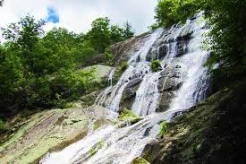 11 Best Hikes In Virginia For Waterfalls Meadows And Mountains Mountain Iq