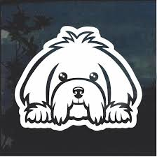 Really Cool Maltese Peeking Dog Window Decal Sticker Check It Out Here Https Customstickershop Us Shop Maltese Peeking D Dog Window Window Decals Dog Decals