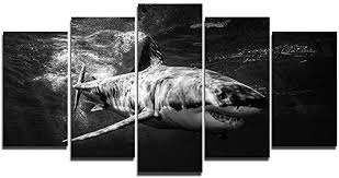 Amazon Com Faicai Art 5 Piece Great White Shark Paintings Wall Art Canvas Prints Black And White Large Animal Wall Poster Artwork Pictures For Home Office Wall Decorations Framed Ready To Hang 50