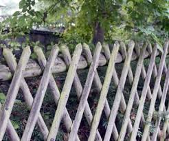 5 Examples Of How To Use The Idiom On The Fence English Daisies