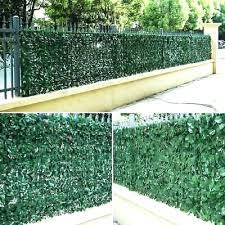 Hedge Walls Item X Piece Artificial Boxwood Mat Plant Panels Wall Rental Near Me Louisesattler