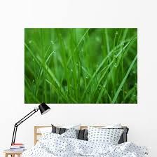 Grass Wall Decal Wallmonkeys Com