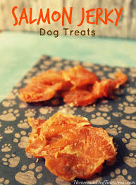 salmon y dog treats archives