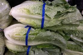 y lettuce strikes again sickening