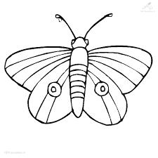 Kleurplaat Dieren Vlinder Kleurplaat Vlindertje
