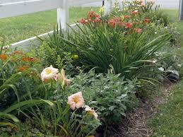 Border Design Evergreens Perennials Tending My Garden