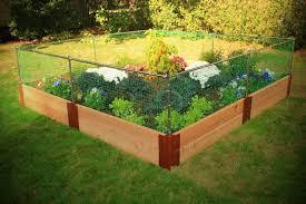 vegetable garden border ideas vegetable