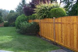 How Can I Make My Fence Dog Proof