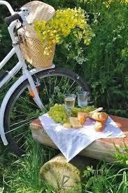 Let's Picnic ♥️ | Bicicletta, Picnic, Immagini