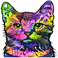 Cat Kitten Face Vinyl Sticker Decal Car Laptop Window Free Post Archives Statelegals Staradvertiser Com