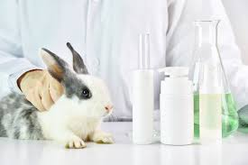 testing for imported cosmetics
