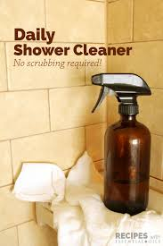 daily shower cleaner recipes with