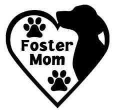 Dog Rescue Foster Mom Decal Ebay