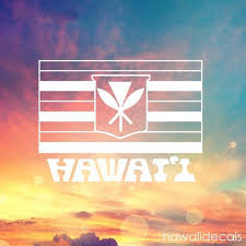 Car Truck Window Sticker Kanaka Maoli Hawaiian Flag Hawaii Decal Labtop