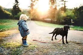 Un Niño Pequeño Niño Y Un Perro Al Aire Libre En Una Carretera En ...