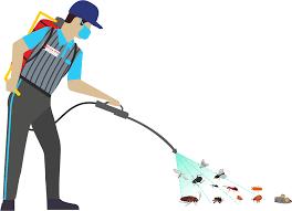Top Pest Control Service Closest You.