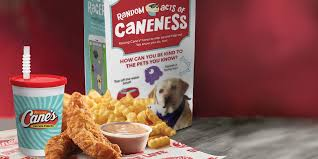 raising cane s kids meal and game app