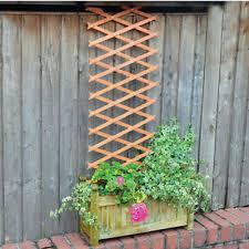 wooden garden trellis climbing plant