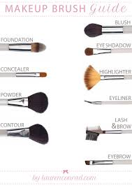 beauty makeup brush guide