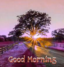 beautiful good morning wallpaper 156