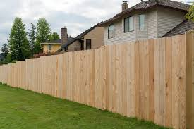 Cedar Vs Pine Fence Pros Cons Comparisons And Costs