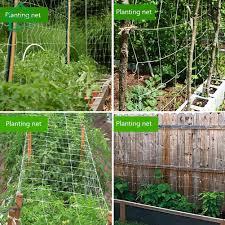 Home Garden Plants Climbing Net Morning Glory Flower Cucumber Vine Grow Support Shopee Philippines