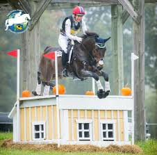 Tamra Smith's Control of CCI** Continues at Fair Hill | Horses Daily
