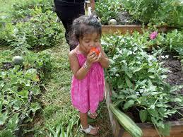 garden class series
