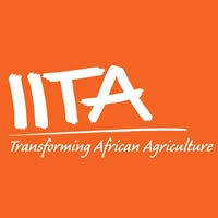 International Institute of Tropical Agriculture (IITA) Job Recruitment (4 Positions)