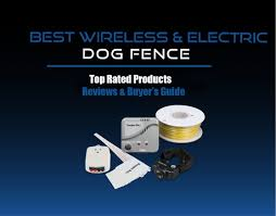30 Best Electric Wireless Dog Fences Underground Invisible Dog Fence