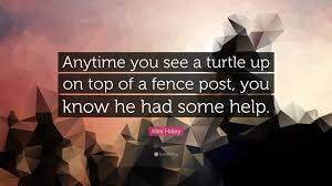 Alex Haley Quote Anytime You See A Turtle Up On Top Of A Fence Post You Know He Had Some Help 7 Wallpapers Quotefancy