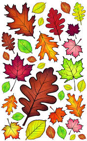Autumn Leaves Wall Decals Wacky World Studios Do It Yourself Store