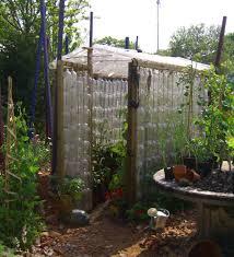 greenhouse using plastic bottles