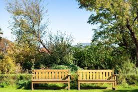 timber bench seats outside in a sunny