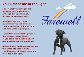 dogs lament poem rainbow bridge pet poems pet loss quotes