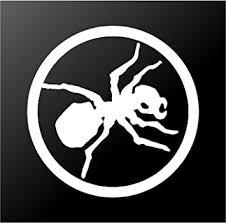 Amazon Com Prodigy Ant Trance Edm Dj 5 5 Logo Vinyl Decal Sticker For Laptop Car Window Tablet Skateboard White Color Computers Accessories