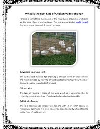 What Is The Best Kind Of Chicken Wire Fencing