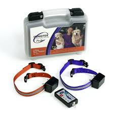 Dog Training Remote Trainers Behaviour Systems Petsafe Thailand