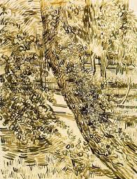 tree with ivy in the asylum garden by