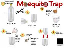 have a mosquito free summer with these